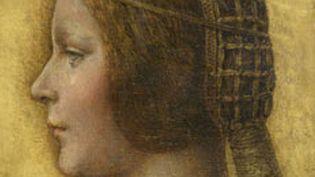 """""""La Belle princesse"""", un portrait attribué à Léonard de Vinci et revendiquée par le faussaire Shaun Greenhalgh  (DR)"""