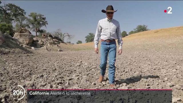 États-Unis : la Californie sévèrement frappée par la sécheresse
