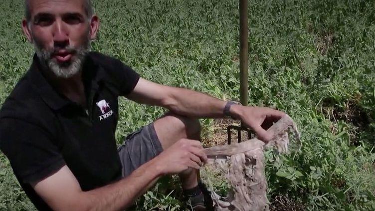 L'Agence de la transition écologique invite les agriculteurs à réaliser un test original pour tester la vie de leur sol. (FRANCEINFO)