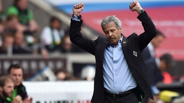 Lucien Favre, le coach du Borussia Moenchengladbach (PATRIK STOLLARZ / AFP)