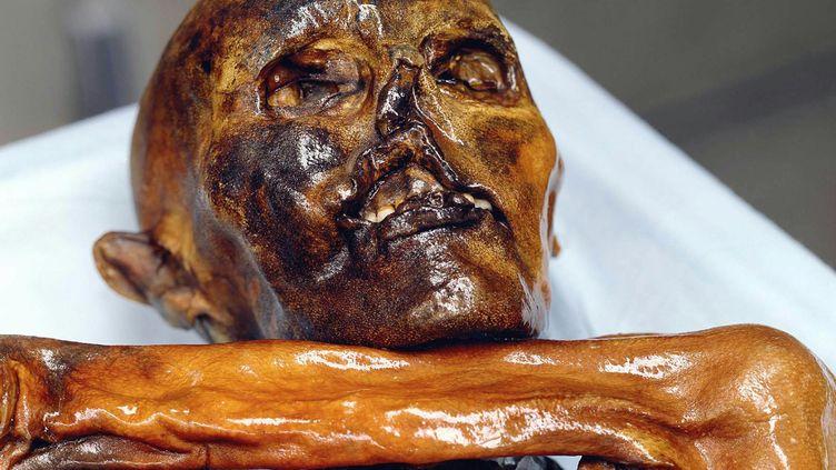 Découvert en 1991 dans un glacier des Dolomites italiennes, Ötziest un représentant de l'espèce Homo sapiens. (MUSEO ARCHEOLOGICO ALTO ADIGE / MAXPPP)