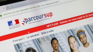 La plateforme Parcoursup prise en photo le 23 novembre 2018. (THIERRY THOREL / NURPHOTO / AFP)