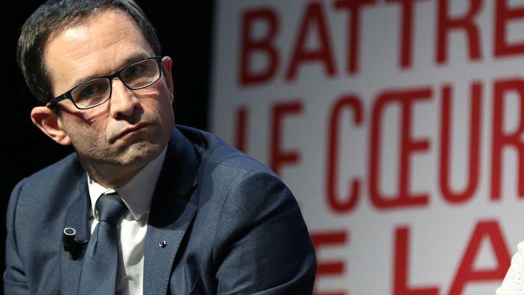 Benoît Hamon en meeting à Toulouse (Haute-Garonne), le 20 janvier 2017 (JEAN-MARC HAEDRICH/SIPA)