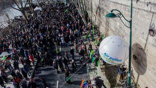 Manifestation pour le maintiende la piétonnisation des voies sur berges, à Paris, le 10 mars 2018. (AURELIEN MORISSARD / MAXPPP)