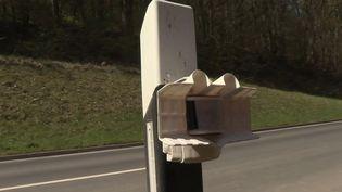 Innovation : en Allemagne, des appareils pour détecter les animaux sur les routes  (FRANCE 3)
