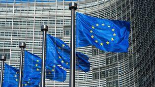 Des drapeaux de l'Union européenne à Bruxelles (Belgique), le 15 mai 2015. (DANIEL KALKER / DPA)