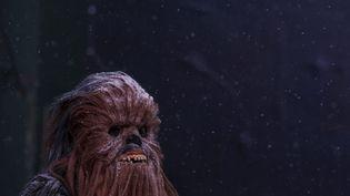 A homme déguisé en Chewbacca à Manhattan (Etats-Unis), le 22 janvier 2016. (CARLO ALLEGRI / REUTERS)