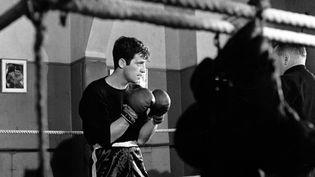 """L'acteur Jean-Paul Belmondo en boxeur, dans """"L'Aîné des Ferchaux"""", film soirtie en 1963. (SPECTACLES LUMBROSO / ULTRA FILM / COLLECTION CHRISTOPHEL VIA AFP)"""