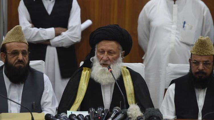 Le Conseil de l'Idéologie islamique en réunion (FAROOQ NAEEM / AFP)