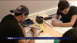 Des lycéens révisent avant le bac. (FRANCE 3)