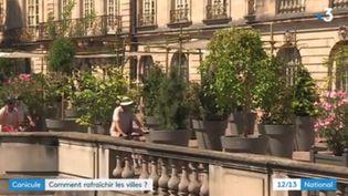 """A Strasbourg (Bas-Rhin), la nouvelle municipalité écologiste va installer des """"ilots de fraîcheur"""" en ville. (FRANCE 3)"""