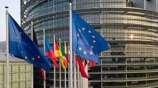 Des drapeaux européens près du siège du Parlement européen à Strasbourg (Bas-Rhin),le 14 avril 2019. (PATRICK HERTZOG / AFP)