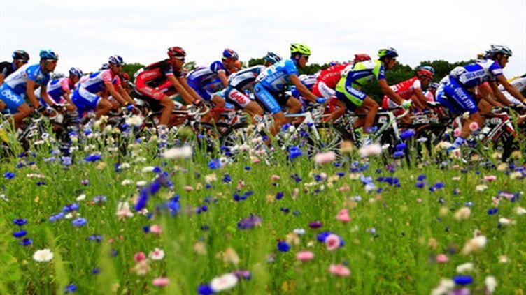 Les coureurs à travers champs (JOEL SAGET / AFP)