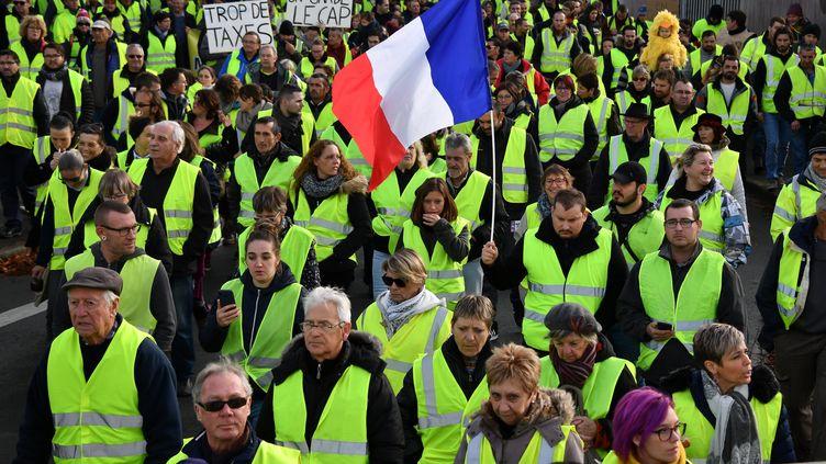 """Des """"gilets jaunes"""" à Rochefort (Charente-Maritime), le 24 novembre 2018. (XAVIER LEOTY / AFP)"""