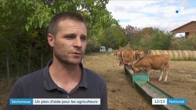 Sécheresse : un plan pour aider les agriculteurs