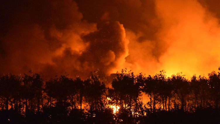 Une série de gigantesques explosions a fait au moins 44 morts et plus de 500 blessés dans une zone industrielle de Tianjin (Chine). (AFP)