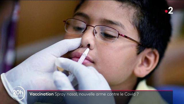 Vaccin contre le Covid-19 : des chercheurs français étudient un vaccin nasal