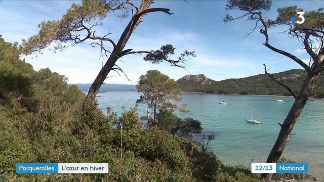 Porquerolles : préserver l'une des plus elles plages d'Europe