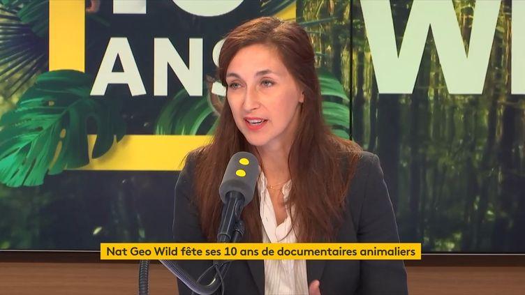 Marika Puiseux, directrice des programmes de la chaîne Nat Geo Wild, était l'invitée de l'info médias lundi 10 septembre 2018 sur franceinfo. (FRANCEINFO / RADIOFRANCE)