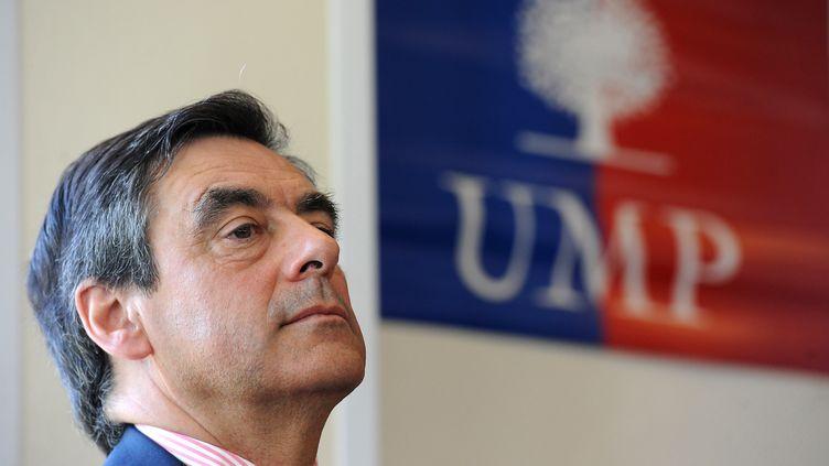 François Fillon, en meeting à Fleury-les-Aubrais, près d'Orléans, le 9 juillet 2012. (ALAIN JOCARD / AFP)