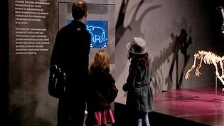 Premiers visiteurs au musée des Confluences, Lyon, 20 décembre 2014  (Culturebox)