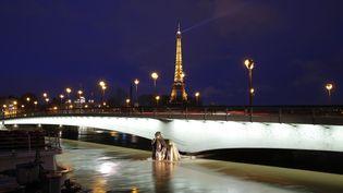 Le Zouave du pont de l'Alma à Paris le 25 janvier 2018. (GEOFFROY VAN DER HASSELT / AFP)
