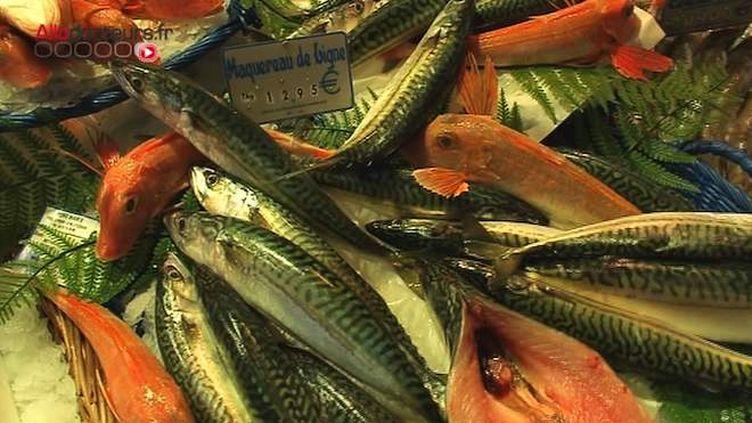 Les produits de la mer décidément bons pour le coeur !