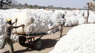 Des fermiers burkinabè transportent du coton lors de la campagne de 2007 à Pama, au centre du pays. (ISSOUF SANOGO / AFP)
