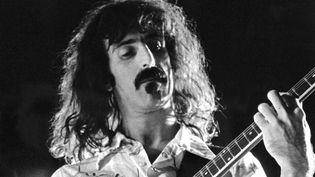 Frank Zappa  (STF / AFP)