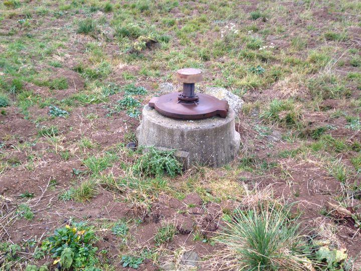 Un captage d'eau entouré par les trous des campagnols terrestres, à Paulhac (Cantal). (COLLECTIF CONTRE LES RATS TAUPIERS)