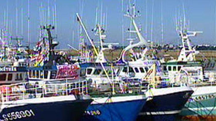 Bateaux de pêche à l'anchois (archives) (France 2)
