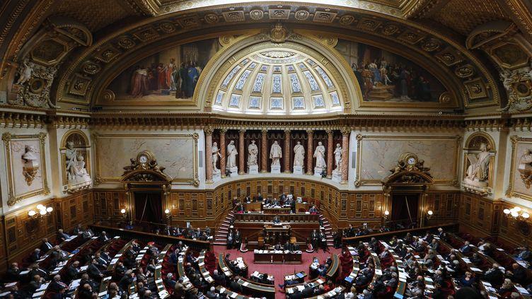 Une vue de l'hémicycle du Sénat, le 28 octobre 2014. (FRANCOIS GUILLOT / AFP)