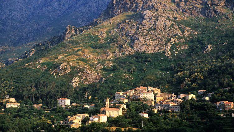 Un incendie s'est déclaré dimanche 15 juilletprès du village de Feliceto (Haute-Corse), ici photographié en 2006. (BRUCE PETER / HEMIS.FR / AFP)