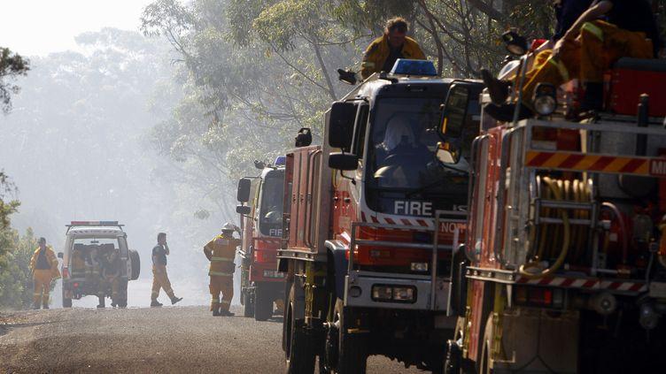 Les pompiers australiens dans les montagnes Bleues, à 80 km à l'ouest de Sydney (Australie), le 24 octobre 2013. (REUTERS / FRANCETV INFO)