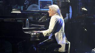 Véronique Sanson en concert en novembre 2017.  (JACQUES DEMARTHON / AFP)