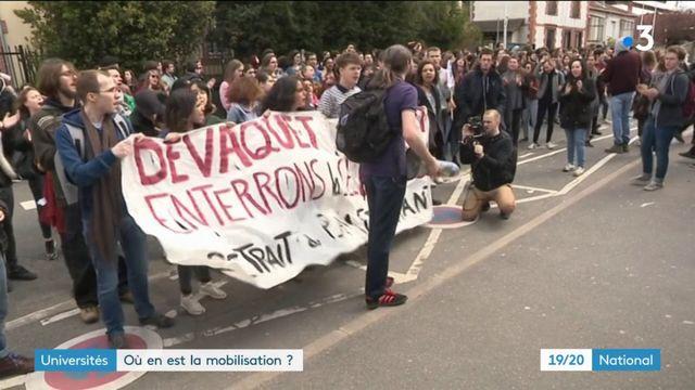 Universités : forte mobilisation contre la loi Vidal