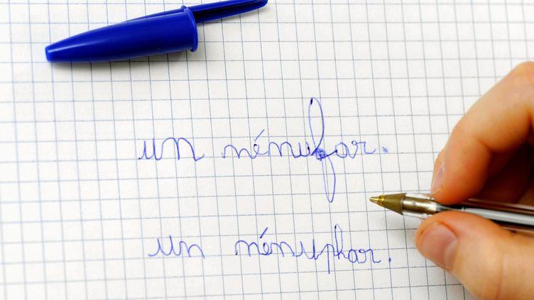 Un enfant écrit le mot nénuphar / nénufar de deux façons différentes à Nancy, le 26 février 2012. (ALEXANDRE MARCHI / MAXPPP)
