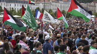 Une manifestation pro-palestinienne autorisée à Lyon (Rhône), le 19 juillet 2014. (PHILIPPE MERLE / AFP)