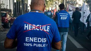 Un manifestant contre le projet Hercule d'EDF, le 19 septembre 2019 à Lyon. (NICOLAS LIPONNE / NURPHOTO / AFP)