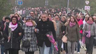 131 femmes victimes de violences conjugales ont été tuées en 2019. Dimanche 17 novembre, dans le Bas-Rhin, une marche avait lieu en hommage à Sylvia Auchter. Cette femme de 40 ans a été poignardée sous les yeux de sa fille. (France 3)
