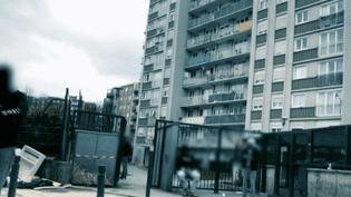 Trafic de drogue : des appartements condamnés pour faire réagir l'État (France 2)