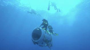 Journée mondiale de l'océan : les fonds marins dévoilés par Emmanuelle et Ghislain Bardout (FRANCEINFO)
