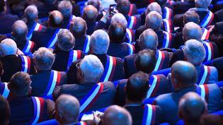 Des élus lors des Assises des maires bretons, à Saint-Brieuc (Côtes-d'Armor), le 3 avril 2019. (DAMIEN MEYER / AFP)