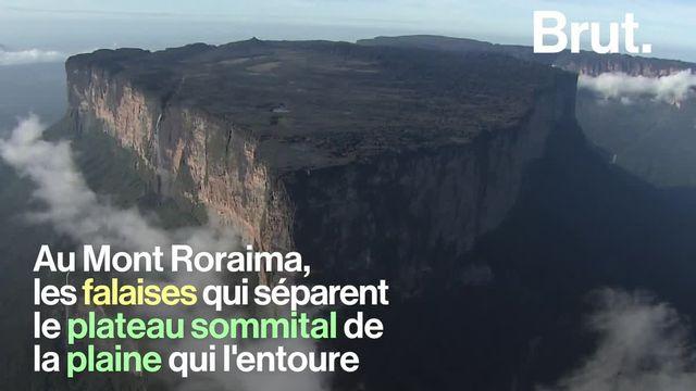 """Située en Amérique du Sud, cette montagne est l'un des lieux les plus inaccessibles sur Terre. Si bien qu'un écosystème unique s'y est développé. Cette montagne est surnommée """"l'île flottante""""."""