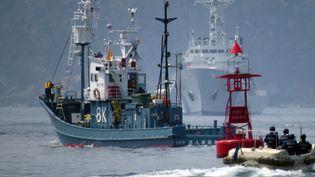 Un bateau japonais servant pour la pêche à la baleine, au port d'Ayukawa, àIshinomaki (Japon), le 26 avril 2014. (KAZUHIRO NOGI / AFP)
