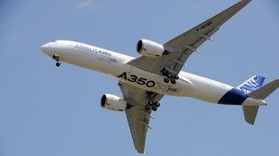 Le nouvel A350 d'Airbus a effectué son premier vol d'essai, le 14 juin 2013, au-dessus de Toulouse (Haute-Garonne). (ERIC CABANIS / AFP)