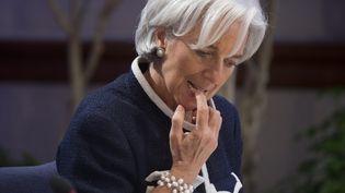 La directrice générale du FMI, Christine Lagarde, lors d'une réunion à Washington (Etats-Unis), le 18 avril 2013. (SAUL LOEB / AFP)