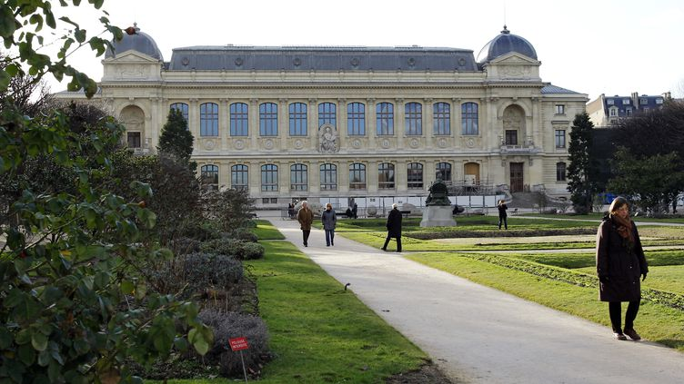 Le Muséum national d'histoire naturelle de Paris, le 5 février 2010. (Photo d'illustration) (PATRICK KOVARIK / AFP)