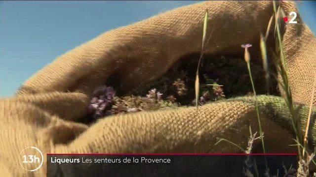 Savoir-faire : le succès des liqueurs artisanales de Provence