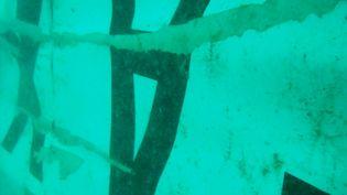 Photographie sous-marine de la queue de l'appareil d'AirAsia prise par l'agence indonésienne de recherche et de secours, le 7 janvier 2015 dans la mer de Java. (BASARNAS / AFP)